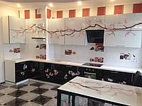 """Кухня с рисунком """"САКУРА"""""""