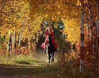 Активная прогулка на лошадях