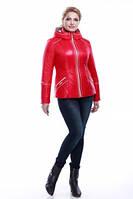 Куртка Кира 2 демисезонная красная