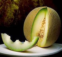 КАРИБИАН КИНГ F1 - семена дыни, Rijk Zwaan 100 семян