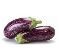 ЛЕЙРЕ F1 - насіння баклажана, Rijk Zwaan 100 насінин