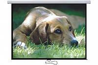"""Экран для проектора 77""""(172х97см) LOGAN PRMC2"""