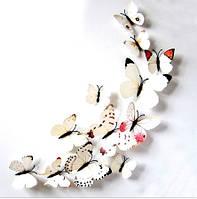 Бабочки 3D белые с прожилками (цветные) 3Д декор наклейки магнит