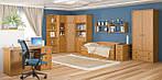 Антикризисные цены на мебель от фабрики «Мебель –Сервис»