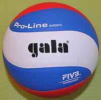М'яч волейбольний Gala Pro-Lline 10 BV5591S, фото 1