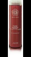 Восстанавливающий шампунь для волос HUKAI SEISHIN