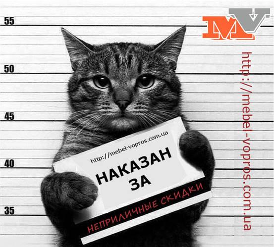 За что наказали кота?