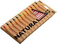 Карандаши цветные Marco Natural Jumbo (12 цветов) для рисования