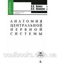 Анатомия центральной нервной системы.  Попова Н.П.