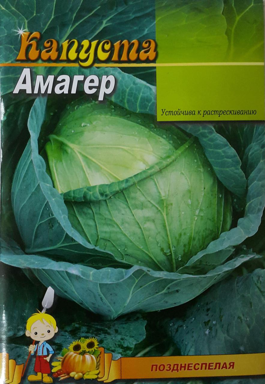Семена Капусты сорт Амагер, пакет 10х15 см - Интернет-магазин sevenMART  в Одессе