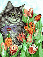 """VK 016 """"Котик в тюльпанах"""" Роспись по номерам на холсте 40x30см"""