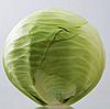 ПАРАДОКС F1 - семена капусты белокочанной 2 500 семян, Bejo Zaden
