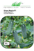 Семена Огурец  Мадита F1 10 семян Seminis