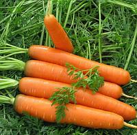 РОЙАЛ ФОРТО - семена моркови Нантес,100 грамм, Semenis, фото 1