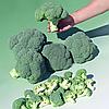 БОМОНТ F1 - семена капусты брокколи, 2 500 семян, Bejo Zaden
