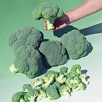 БОМОНТ F1 - семена капусты брокколи, 2 500 семян, Bejo Zaden, фото 1