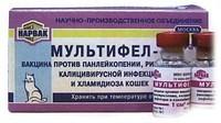 Мультифел- 4 — для иммунизации домашних и диких  кошек