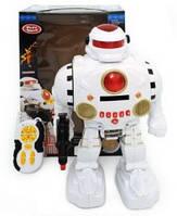 Робот Защитник планеты 9185