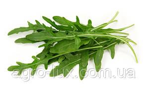 Семена рукколы Гурман (Пасьянс) 100 гр
