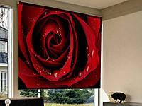 Рулонные фотошторы на проем красная роза