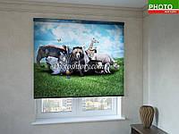 Рулонные шторы с фотопечатью дикие животные
