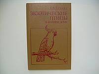 Лукина Е.В. Экзотические птицы в нашем доме (б/у)., фото 1