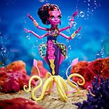 Кала Мерри Большой Скарьерный Риф, фото 2