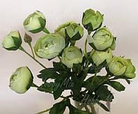 Камелия св.зеленая букет, фото 1