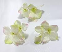 Веточки гортензии бело-зеленая с розовым 3 шт.