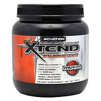 Xtend 375 g watermelon madness