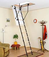 Чердачная лестница «Oman» Stallux 3 (ST3)