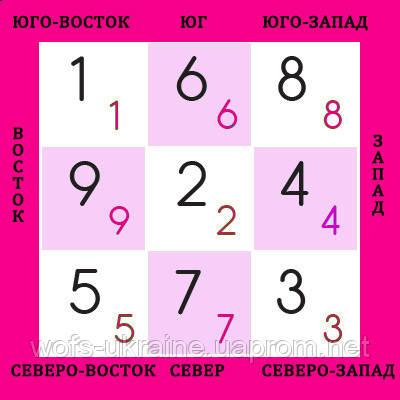 ЛЕТЯЩИЕ ЗВЕЗДЫ ФЕН ШУЙ  - 1 -й месяц год Огненной Обезьяны 2016