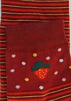 Комплект для девочек: лосины, носки (цвет бордо), рост 110-116 см
