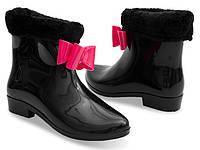 Женские ботинки BERTINA  , фото 1