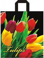 Пакет петля 40*43 Тюльпаны