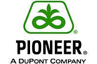 Пионер / DuPont Pioneer