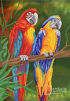 """Схема для вышивки бисером """"Яркие птицы"""""""