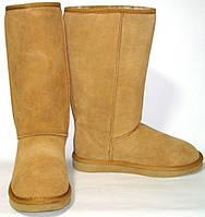 Сапоги зимние замшевые Угги Farasion (36- 40)