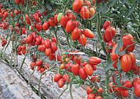 Семена Томат Колибри F1, 100 семян Clause