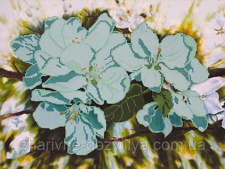 """Схема для вышивания бисером на подрамнике (цветы) """"Яблоневый цвет"""", фото 2"""