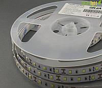 LED лента Estar SMD2835, 60шт/м, 14,4W/m, IP20 Cool White 9000-10000K
