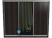 Шкаф купе. Система для самостоятельной сборки. Ручка А119. Габариты 2100(Ш) х 2200(В) Двери 2 ДСП+Зеркало, фото 1