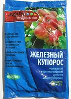 Железный Купорос 500 гр. Август