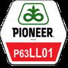 Семена подсолнечника Пионер П63ЛЛ01, Pioneer P63LL01