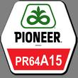 Семена подсолнечника Пионер ПР64А15, Pioneer PR64A15