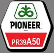 Семена кукурузы Пионер ПР39А50, Pioneer PR39A50