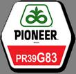 Семена кукурузы Пионер ПР39Г83, Pioneer PR39G83