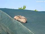 Затеняйка ( 60% ) шр.3.12 м., фото 4