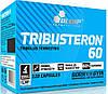 Трибулус TRIBUSTERON 60 120 капсул