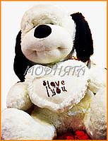 Мягкая плюшевая собака с сердцем 40 см | Мягкие игрушки магазин